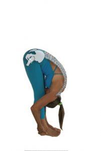 Idealen predklon oz. sklanjanje hrbtenice